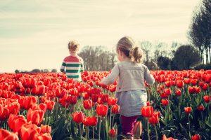 bloom-blossom-children-36745 (1)